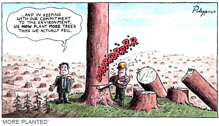 polyp_cartoon_sustainable_forestry